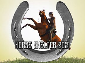 HORSE SHELTER 2021 Game Free Download