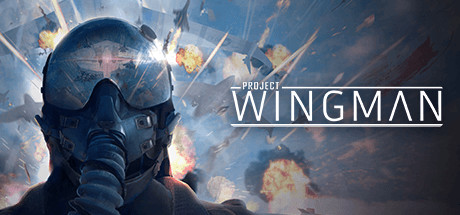 Project Wingman Game Free Download